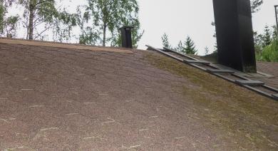Sammalnauha - Sammaleen poisto katolta